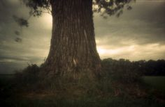 """a thunderstorm is coming after a hot summer day.   Photo taken with Leica and Skink Pinhole Pancake, Zone Sieve """"impressionist"""".   Exposure: 3 seconds"""