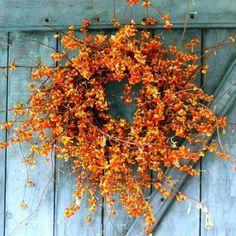 Celebrating my favorite season, Autumn ... it always ends way too soon!