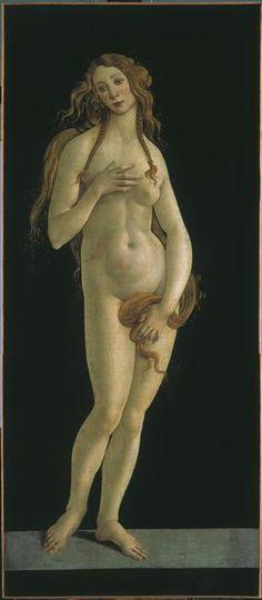 Vénus, Botticelli Sandro (1444/1445-1510) (atelier de)