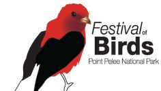 Festival of Birds in early May - Point Pelee National Park. Bird Migration, Nature Center, Great Lakes, Make Me Smile, Ontario, National Parks, Birds, Tours, Adventure
