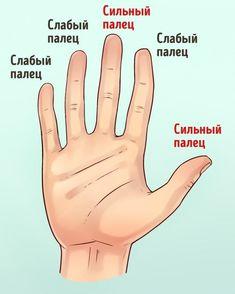 Что расскажут руки о вашем характере