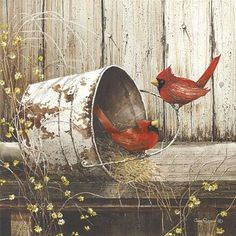 John Rossini artwork on paper prints, canvas and wood from Penny Lane Publishing. Bird Pictures, Pictures To Paint, Pretty Birds, Beautiful Birds, Beautiful Drawings, Decoupage, Cardinal Birds, Bird Art, Wall Art Prints
