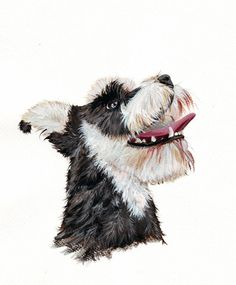 Schnauzer Dog Painting  print of gouache painting  by Splodgepodge, $15.00
