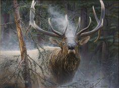Close Encounter - Bull Elk, Jay Kemp
