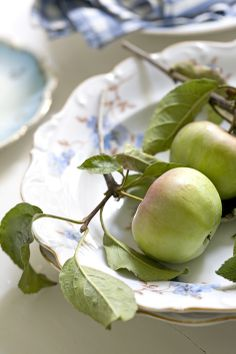green apples on blue and white