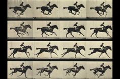 Muybridge-Stopmotion