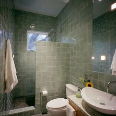 Spaces Showers Without Doors Design, Pictures, Remodel, Decor and Ideas - page 3