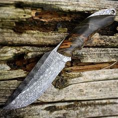How elegant are the curves in this blade! Credit goes to @ap_blades cheers mate!  #badass #cool #usa #america #combat #fight #fightingknife #knife #knives #knifegasm #knifeporn #knifepics #americaknife #amazing