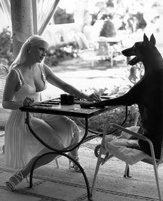 celebrities backgammon player