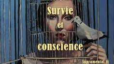 GHN-Survie et conscience-1-07-2015-supramental tv Conscience, Videos, Movie Posters, Movies, Survival, Wall, Films, Film Poster, Film Books