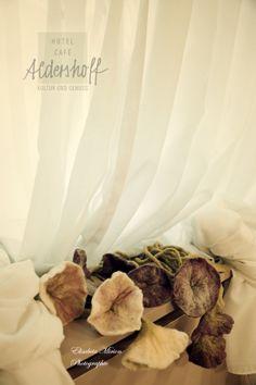 Die Fotografin, die mit dem Herzen sieht und damit Freude verbreitet. Fotografin: Elisabeta Mirion Place Cards, Place Card Holders, Home Decor, Photography, Joy, Homes, Interior Design, Home Interior Design, Home Decoration