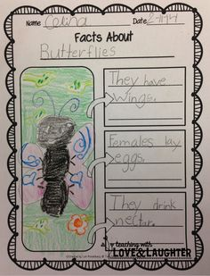 Let's Label, Write, and Draw About...Insects. Could use this format for any non fiction writing