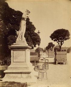 Eugène Atget, Jardin du Tuileries