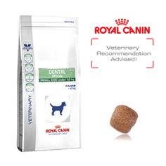 Royal Canin Canine Dental Special Small Dog DSD25