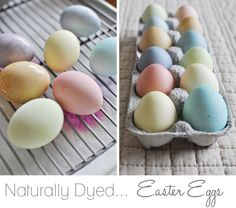 check out those eggs! those are dyed with ALL NATURAL colors, aka spices, fruits, juices, and veggies!!