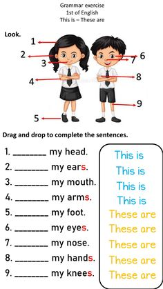 This is-These are online worksheet