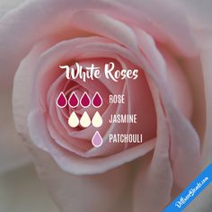 White Roses - Essential Oil Diffuser Blend