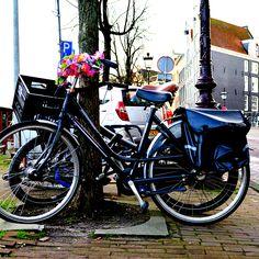 #freiheitsgefühle #reiseblog #weltreise #travel #backpacking #reisen #photography #Holland #Amsterdam #Niederlande #Europa #Fahrräder