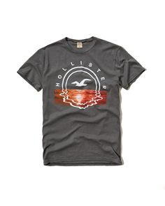 52 Best Hollister Men s T-Shirts images  f8fa7c718a94a