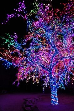 WOW imagine that electric bill! *it is beautiful though!*