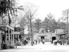 Six Gun Territory street scene - Silver Springs, Florida (probably - this theme park no longer exists) Florida Girl, Old Florida, Vintage Florida, Florida Home, Vintage Ads, Vintage Photos, Marion County Florida, Orlando Strong, Florida Pictures
