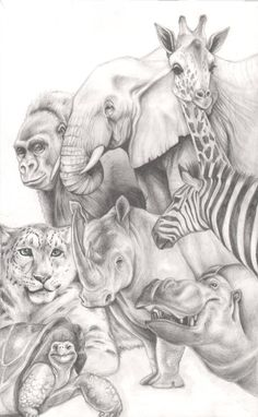 Animals by ~Carliihde on deviantART