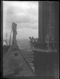 Paris, cathédrale Notre-Dame de Paris, les gargouilles. [1900]-[1910].