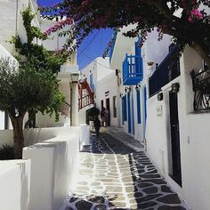 "The streets of Mykonos always make us go ""Awww"". This island gives you many of these moments with its little white houses with their fancy flowers and blue windows and doors hand painted streets and who could forget the windmills yeah it's pretty #cute.  via @topdecktravel  #Travel #Destination #amazingpictures #island #Greece #travelgram #travellers #Indian #Delhi #Mumbai #Kolkata #Uttrakhand #solotraveler #Italy"
