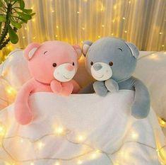 Cute Teddy Bear Pics, Best Teddy Bear, Teddy Bear Images, Teddy Bear Cartoon, Teddy Bear Pictures, Teddy Bear Toys, Teddy Day, Teddy Girl, Teddy Beer