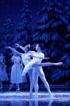 I have always wanted to see the Nutcracker! It looks SO amazing!