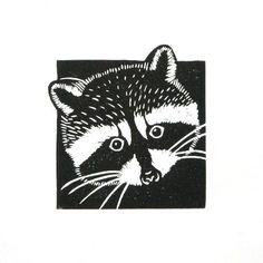 Les animaux de linogravure raton laveur wasbeer main