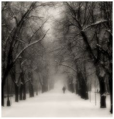winter so cold and lonely; but yet the feeling you have is great!