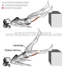 Lying single straight-leg hip extension. Exercise type: Isolation push. Target muscles: Hamstrings (Biceps Femoris, Semitendinosus, and Semimembranosus). Synergists: Gluteus Maximus and Adductor Magnus.