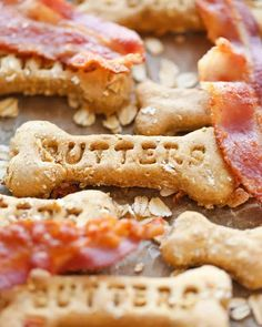 Biscuits au bacon pour chiens 15 Cute & Small Teddy Bear Dog Breeds – These Pups Look Like Cuddly Toys!