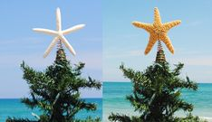 Take a cheap old topper and hot glue a star fish or shell on it....add ribbon and ting to it also