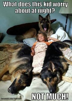 Because he has three German Shepard dogs on his bed while he is sleeping!! (German Shepards are very protective and smart, they are police dogs!!!:)