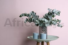 Eucalyptus branches and cups on table near pink wall. Buy Creativity & Imagination. Take a look at what the world's best photographers have to offer at africa-images.com Eucalyptus Branches, Pink Walls, Best Photographers, Imagination, Cups, Creativity, Africa, Stock Photos, Table