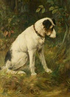BBC - Your Paintings - Terrier Watching a Rabbit Warren Smooth Fox Terriers, Dog Artwork, Historical Art, Vintage Dog, Art Uk, Sports Art, Jack Russell Terrier, Dog Portraits, Illustrations
