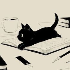 Cats and books. Cats and books. Art And Illustration, Cat Illustrations, Animal Drawings, Cat Art, Art Inspo, Art Sketches, Anime Art, Drawing People, Cute Animals