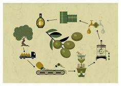 Dieter Braun: Olive Oil