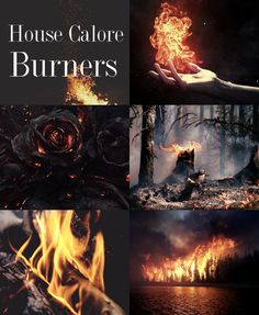 House Calore - Red Queen (Victoria Aveyard)