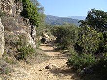 Sierra delos Alcornocales su fauna  y su flora