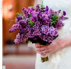 purple wedding bouquet, must have fragrant flowers! lilac, freesias, stocks, etc. Lilac Bouquet, Purple Wedding Bouquets, Lilac Wedding, Boquet, Bridal Bouquets, Lavender Weddings, Bouquet Flowers, Bridal Flowers, Deco Floral