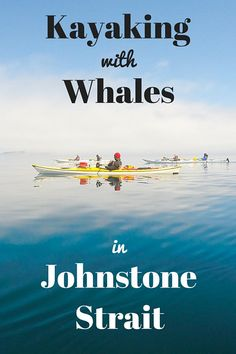Kayaking with Whales in Johnstone Strait, British Columbia
