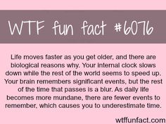Why life seems like it's moving faster - WTF weird & interesting fun facts.point being.spontaneity keeps one young! Wtf Fun Facts, True Facts, Funny Facts, Random Facts, Strange Facts, Crazy Facts, Wtf Funny, Hilarious, The More You Know