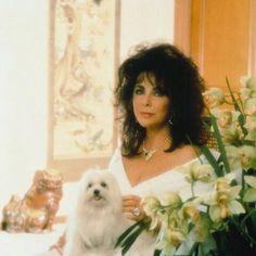 Elizabeth with her beloved maltese Sugar, photographed by Mario Casilli, 1994.