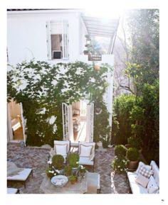courtyard   vines