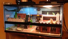 Redecorated my bearded dragons, Peach and Daisy, cage. Increased the size and done in a retro Mario theme.