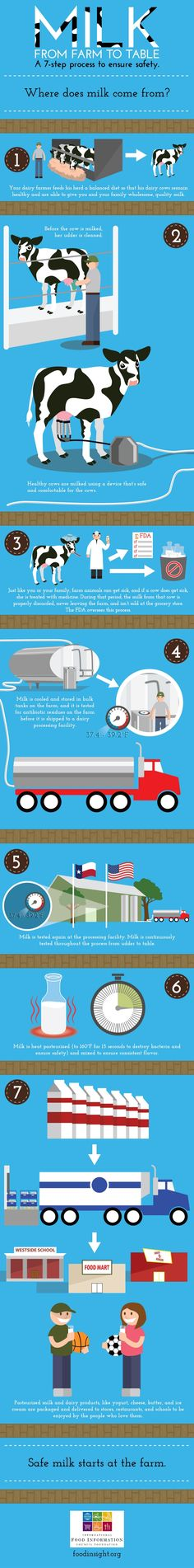 Milk from Farm to Table: A 7-step process to ensure safety. #junedairymonth