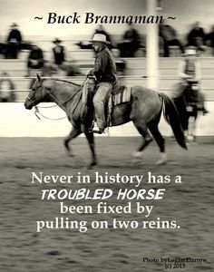 So true!Never in the history of anxious horses has anxiety been relieved by pulling on two reins. Equestrian Quotes, Equestrian Outfits, Equestrian Style, My Horse, Horse Love, Horse Tips, Pretty Horses, Beautiful Horses, Buck Brannaman